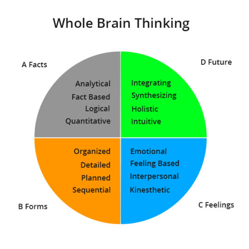 whole-brain-learning